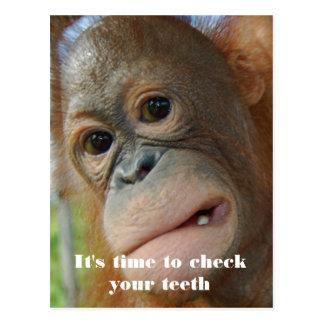 Dentist Appointment Patient Reminder Postcard