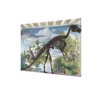 Denver, Colorado - Museum of Natural History 2 Stretched Canvas Print