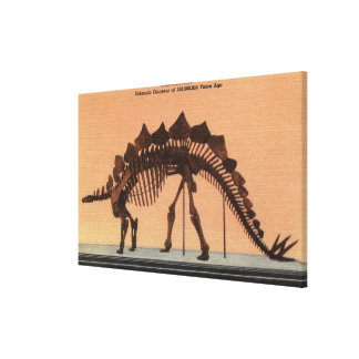 Denver, Colorado - Museum of Natural History Gallery Wrapped Canvas