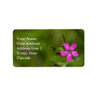 Deptford Pink Wildflower Floral Labels