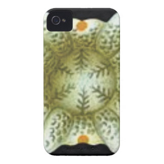 depth of the white flower iPhone 4 case
