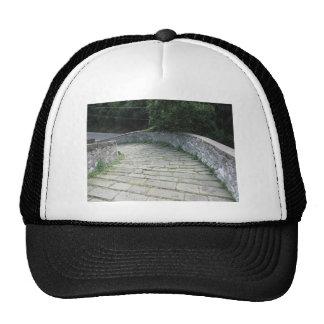 Descent stone walkway of medieval bridge cap