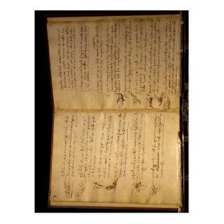 Description Codex flight of the birds Leonardo da  Postcard