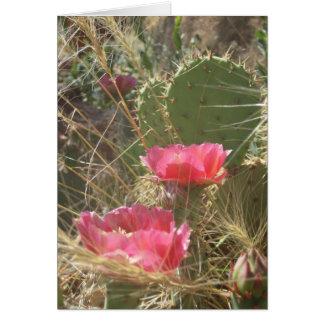 Desert Blooms Card