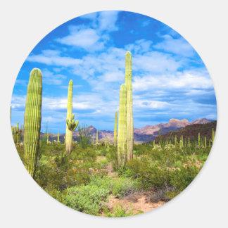 Desert cactus landscape, Arizona Classic Round Sticker