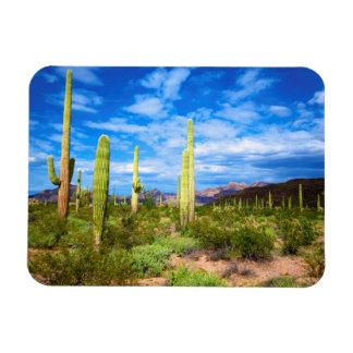 Desert cactus landscape, Arizona Magnet