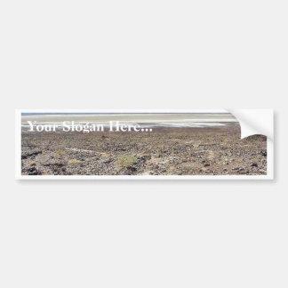 Desert Death Valley Salt Bumper Sticker