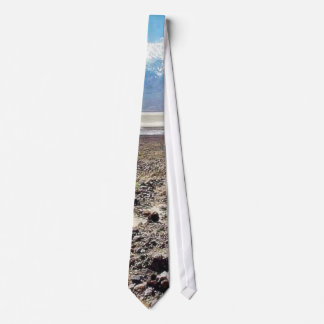 Desert Death Valley Salt Tie