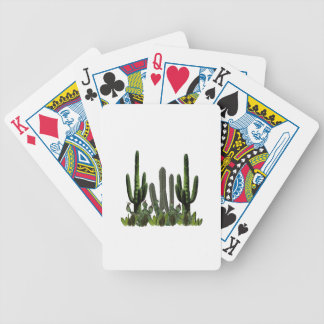Desert Domain Bicycle Playing Cards