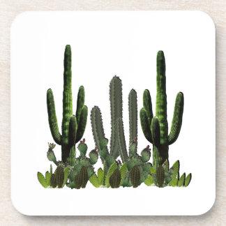 Desert Domain Coaster