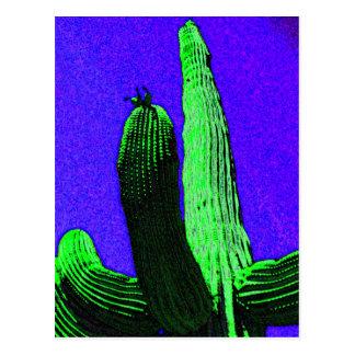 Desert Giant Postcard