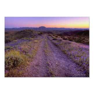 Desert Gravel Road Card