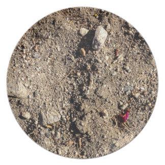 Desert Landfill with Bud Plate