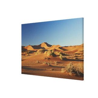 desert Landscape of Namib at Sossusvlei, Canvas Print