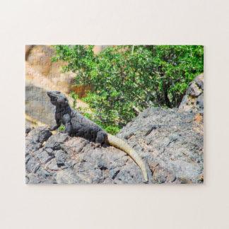 Desert Lizard Nevada. Jigsaw Puzzle