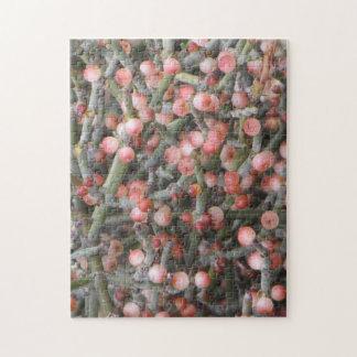 Desert Mistletoe Berries Jigsaw Puzzle