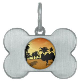 Desert Pet Tags