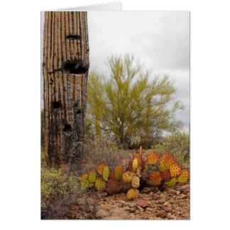 Desert Plants Card