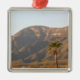 Desert ranch landscape near Monterey, Mexico. Metal Ornament