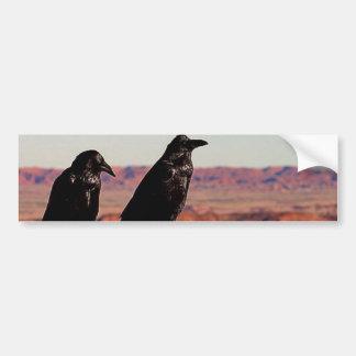 Desert Ravens Bumper Stickers