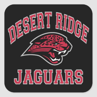Desert Ridge Jaguars Square Sticker