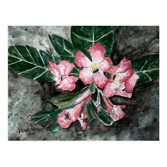 Desert rose flower painting postcard