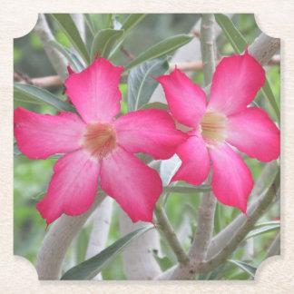 Desert Roses Paper Coaster