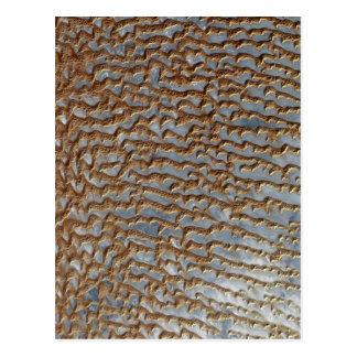 Desert Sand Dunes Terrain Postcard