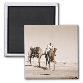 Desert Scene Magnet