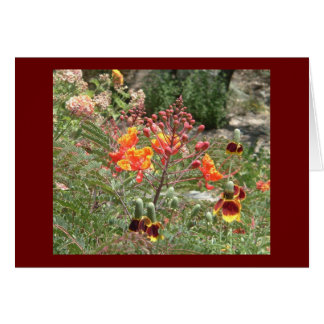 Desert southwest flowers card