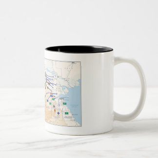 Desert Storm Overlay Mug