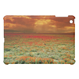 Desert sunset on a field of California poppies, U. Case For The iPad Mini