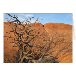 Desert Tannenbaum Card