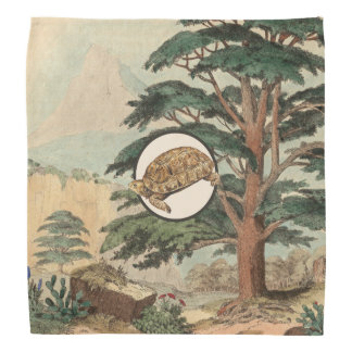 Desert Tortoise In Natural Habitat Illustration Bandana