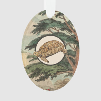 Desert Tortoise In Natural Habitat Illustration Ornament