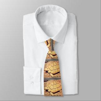 Desert Tortoise Men's Tie