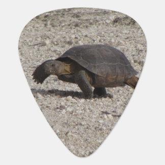 Desert Tortoise Plectrum