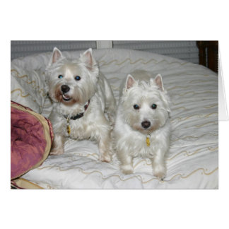 Desi and Lucy Card