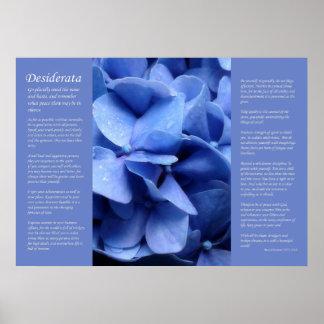 Desiderata - Blue Hydrangea Poster