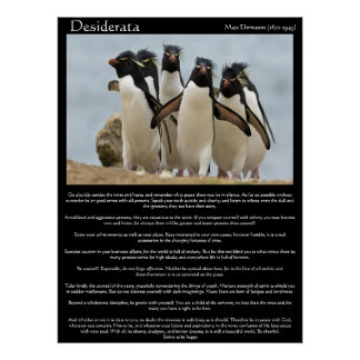 Desiderata Penguins Walking Posters