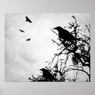Design 43 crow raven poster
