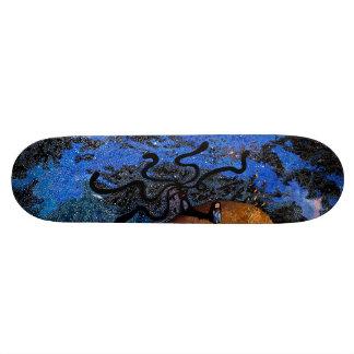 Designed Skate Decks on a limited quantity.