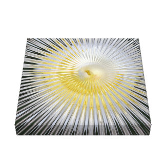 Designer Exploding Star Black and Yellow Gallery Wrapped Canvas