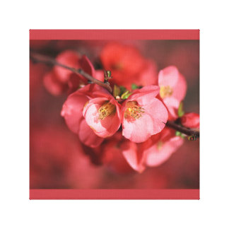 Designer Flowering Quince Wall Art