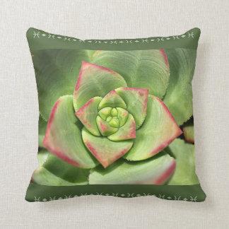 Designer Hens And Chicks Succulent Pillow