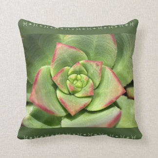 Designer Hens And Chicks Succulent Pillow Cushion