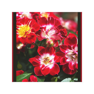Designer Red Carpet Roses Wall Art by bubbleblue Canvas Print