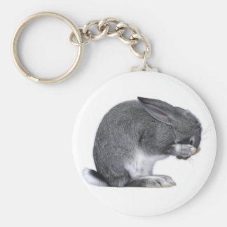 Despairing Rabbit Keychains