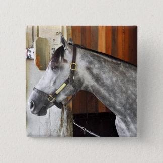 Destin - Horse Haven 15 Cm Square Badge