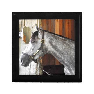 Destin - Horse Haven Gift Box